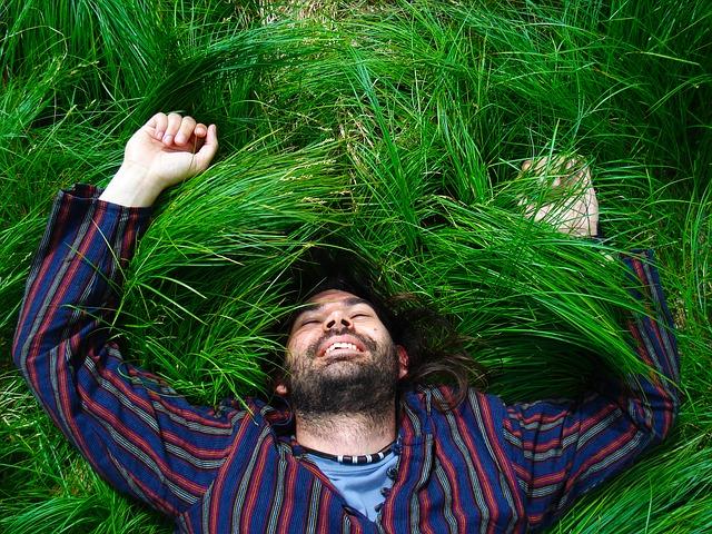muž, pruhovaná košile, tráva
