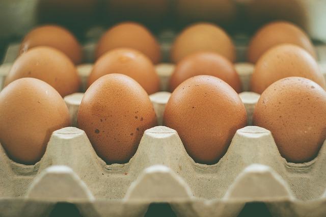 plato vajec.jpg