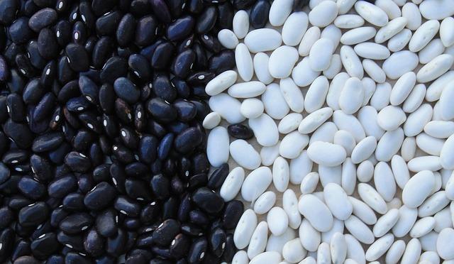 černé a bílé fazole.jpg