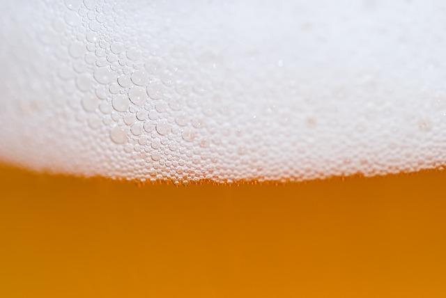 pěna piva