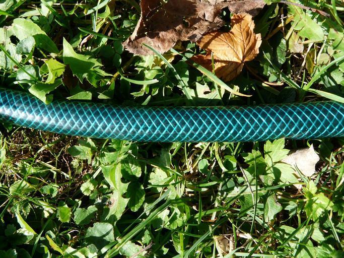hadice v trávě